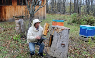 Apiary of the Malakhovs