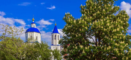 Cathedral of the Intercession: Фото 1